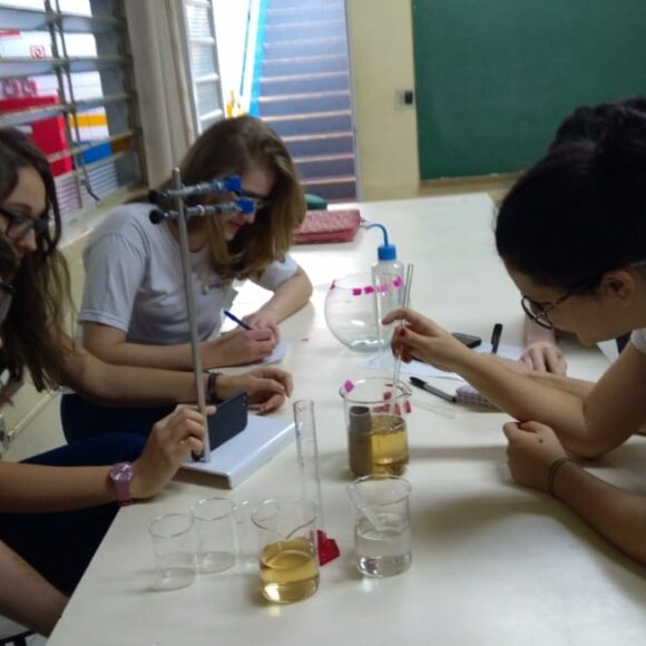 Pesquisa dos alunos da ICJr é destaque em revista científica da UnB